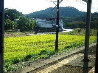 kinokawa23.jpg