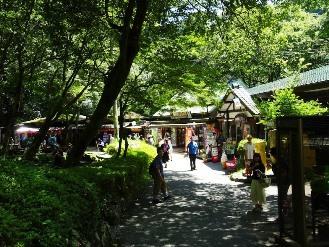 takachiho13.jpg