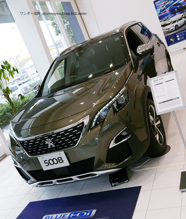 Peugeot5008_25.jpg