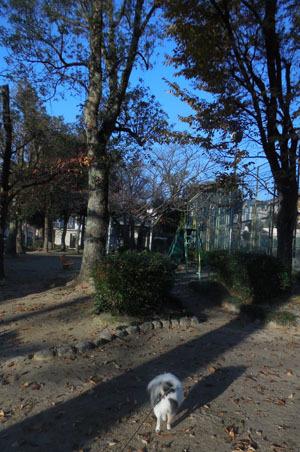 DSCN6173.jpg