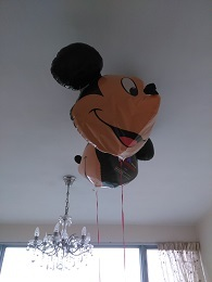 DSC_0054 (6)ballon