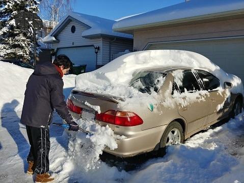 雪を落とす