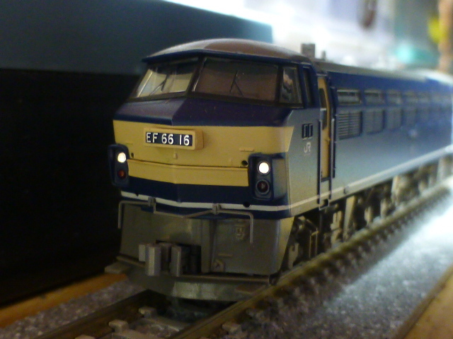 P1030187.jpg