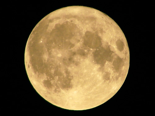 フリー写真 満月