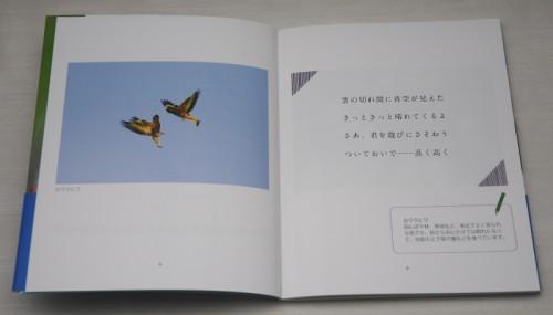 散歩道 本文 2 _5168