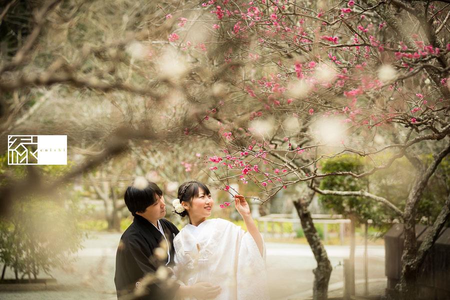 和装前撮り鎌倉新春冬03
