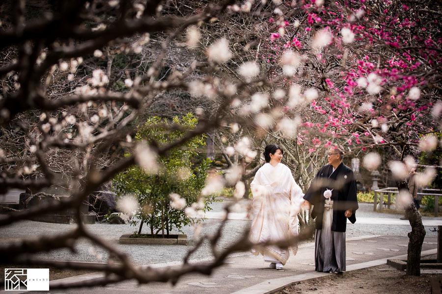 和装前撮り鎌倉新春冬04