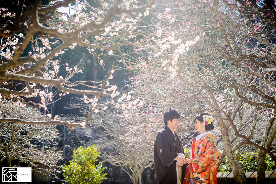 和装前撮り鎌倉新春冬09
