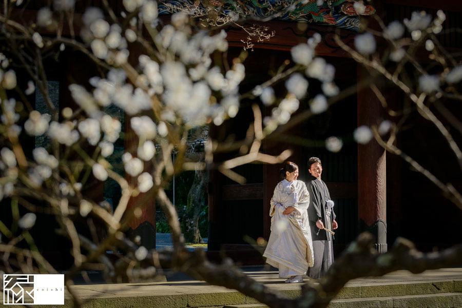 和装前撮り鎌倉新春冬06