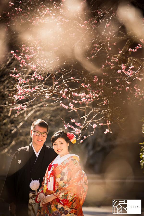和装前撮り鎌倉新春冬16