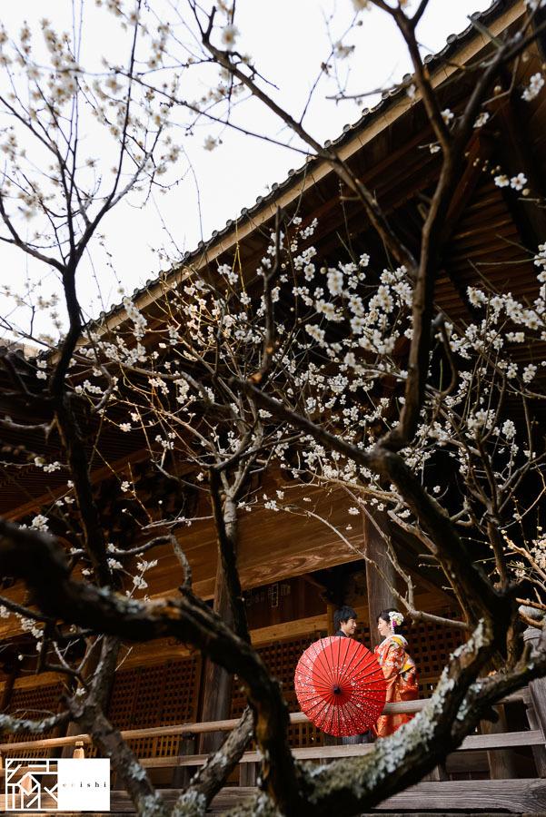 和装前撮り鎌倉新春冬20