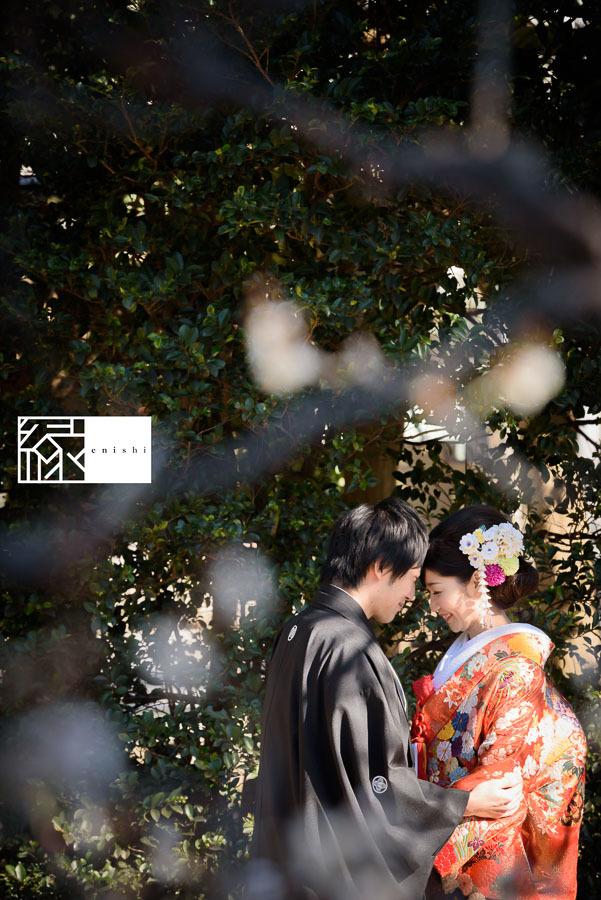 和装前撮り鎌倉新春冬32