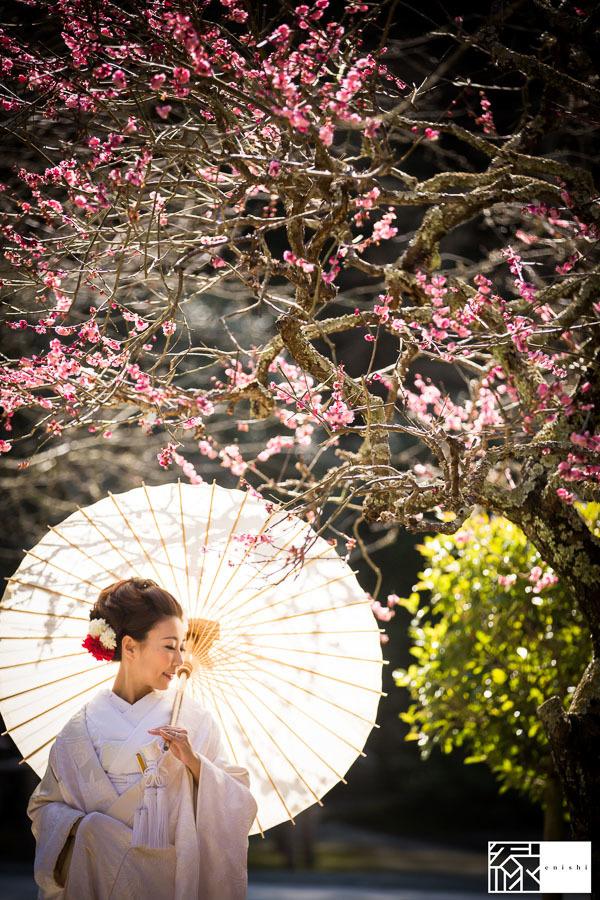 和装前撮り鎌倉新春冬34