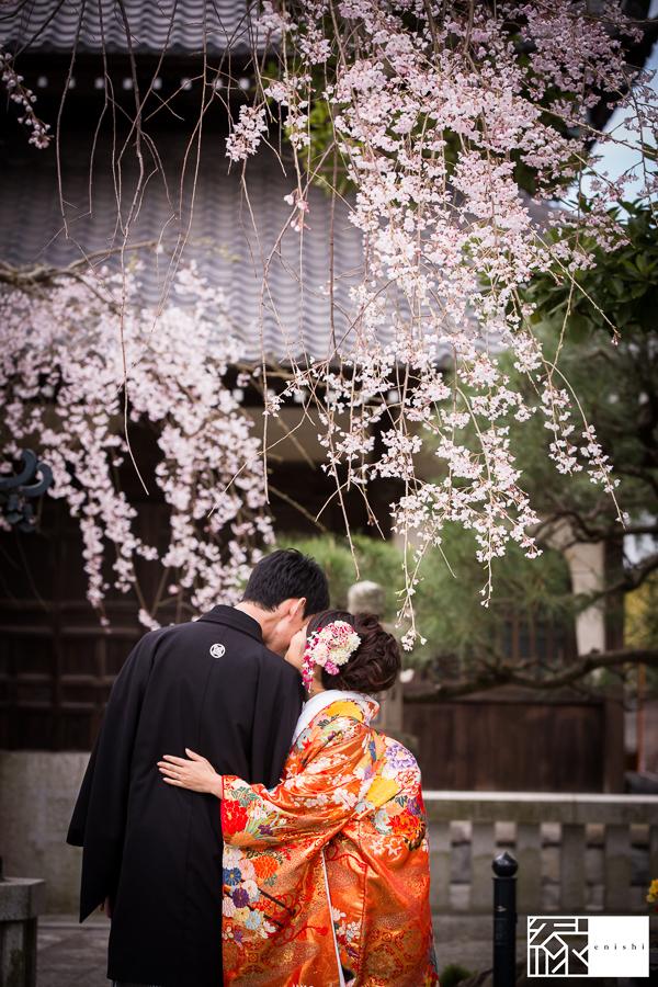 和装前撮り桜鎌倉縁_10