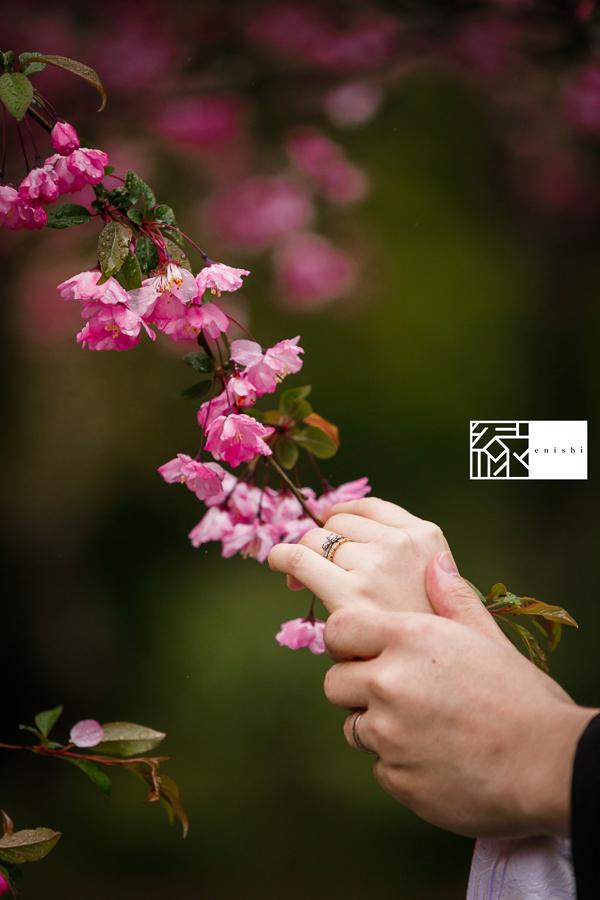 和装前撮り桜鎌倉縁_18