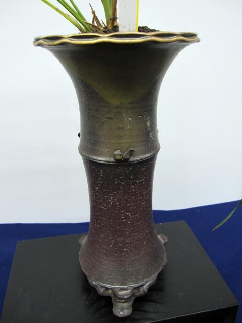yyys 水晶寒蘭の欅鉢13 「サングリーンきむら」が扱っている鹿児島の「花遊」の鉢