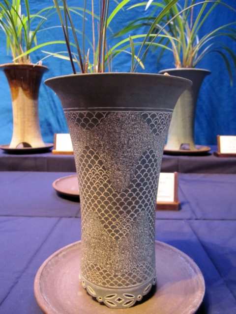 yyys 水晶寒蘭の欅鉢5 牧野植物園寒蘭展