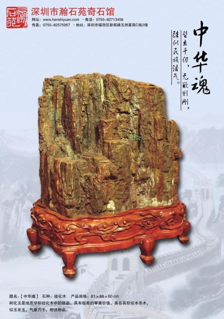 yyyk 硅化木5 China2