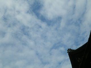 下鴨神社からの空