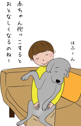 ラブラドールの赤ちゃん抱っこ