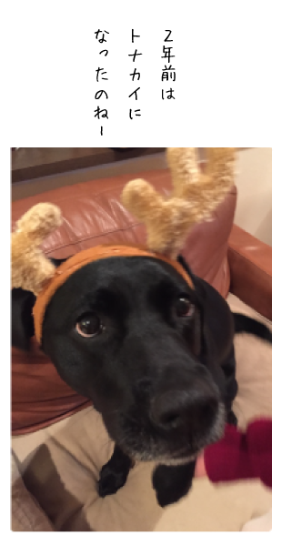 coco17122501.png