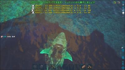 20171029140400_1.jpg