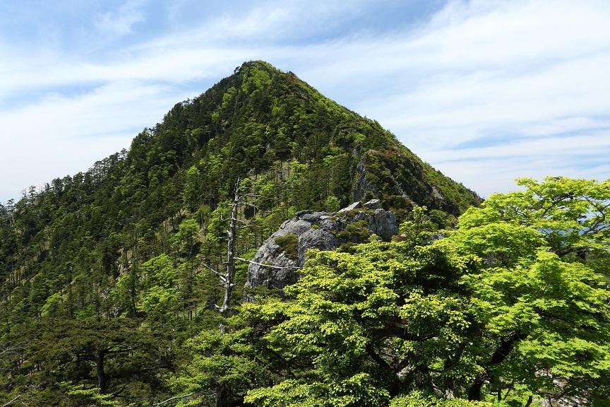 釈迦ヶ岳、38