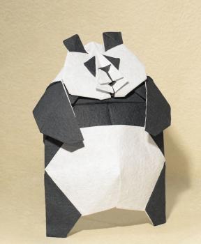 片面パンダ