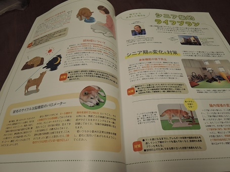 DSCN1821_20171019213731d89.jpg