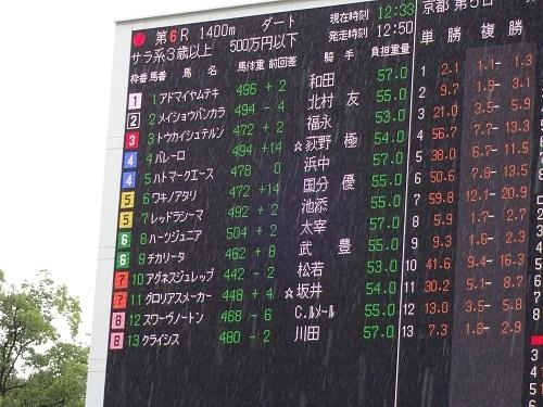 京都6Rオッズ10月15日2017年
