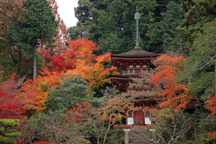 35浄瑠璃寺