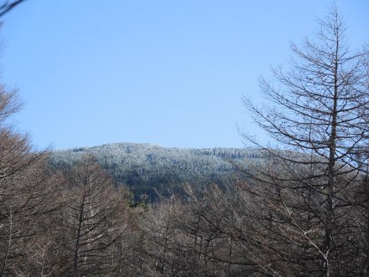 2017.11.黒斑山