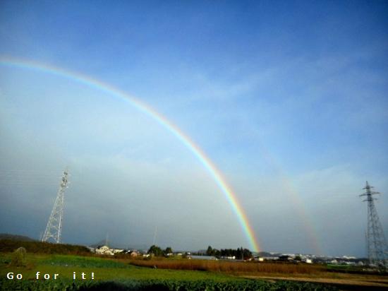 W rainbow 171030