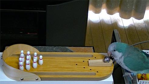 bowling1_1