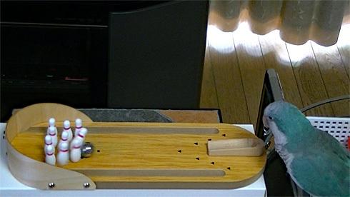 bowling1_3