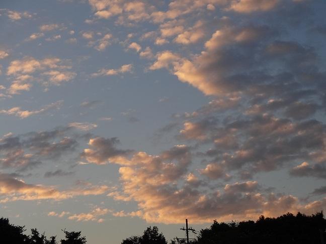 今の季節、夕景が美しすぎる…