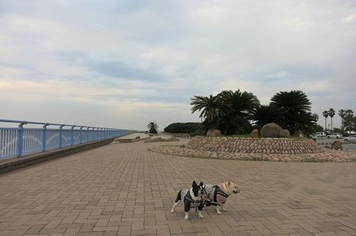 10-26公園