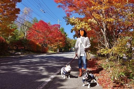 10-26紅葉散歩こ