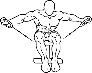 Cable-seated-rear-lateral-raise-1-300x238.png