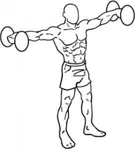 Dumbbell-lateral-raises-1-3-272x300.png