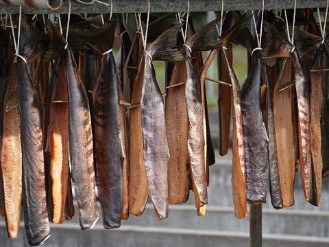 25鮭干しアップ