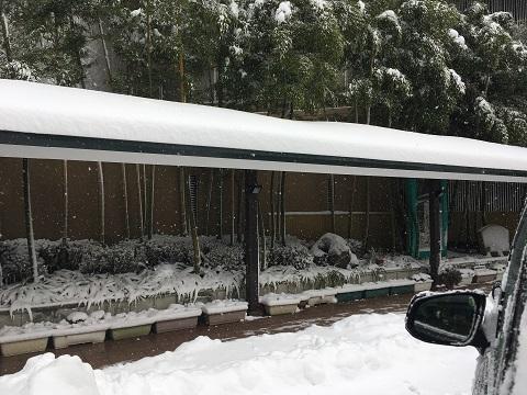 華の湯朝雪