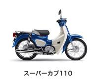 btn_bike_scub110.jpg
