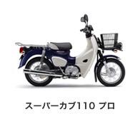 btn_bike_scub110p.jpg