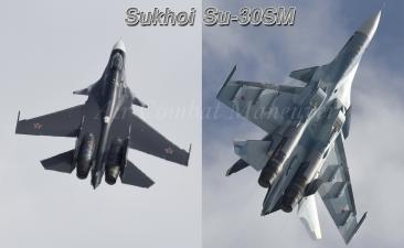 M17-Su30SM_450.jpg