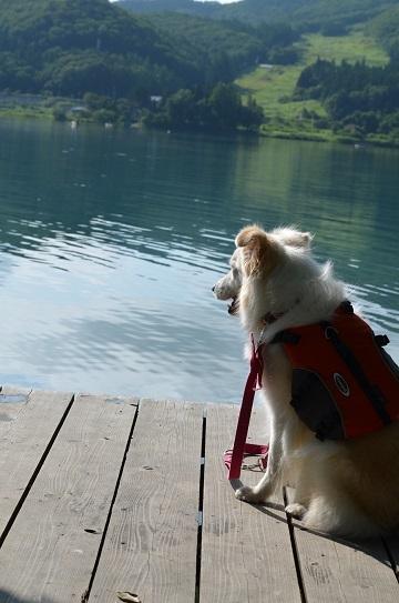 DSC_0097青木湖
