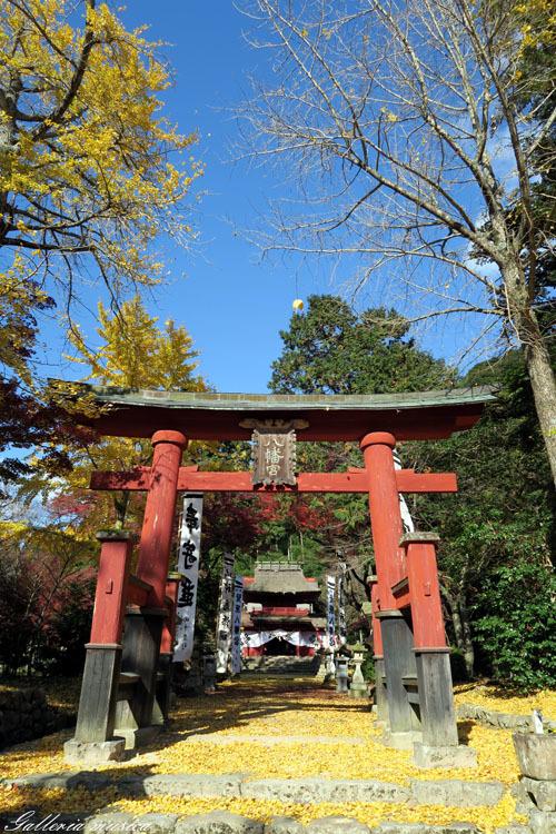 紅葉の神社。