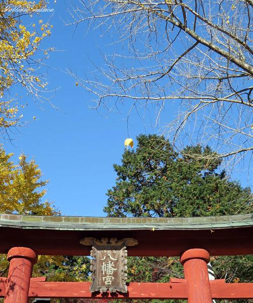 紅葉の神社。1