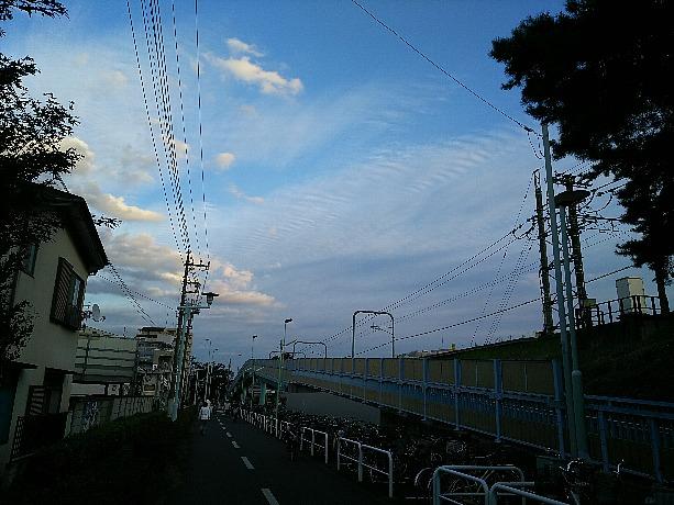 秋の空の雲