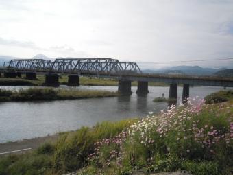 酒匂川左岸鉄橋の下を抜けたり、、171009